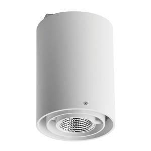 OMS Zipar Surfaced LED stropní reflektor 19 W, 4 000 K