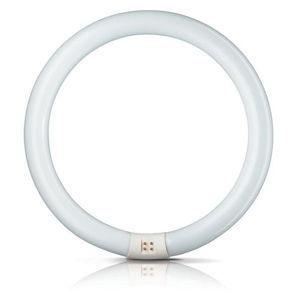Philips G10q 40W 830 světelný kruh Master Circular TL-E