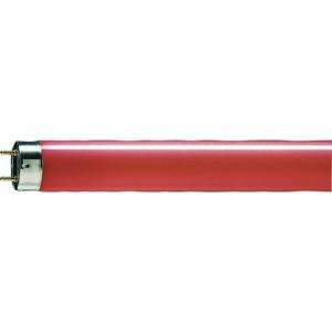 Philips MASTER Massive TL-D 36W 15 G13 barevná lineární zářivka