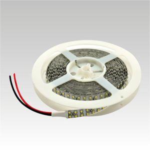NBB LED pásek 12V 240LED/m SMD3528 6000K IP20 19.2W/m 903003050